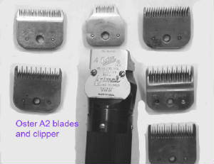 Oster_a2_blades_andclipper.jpg