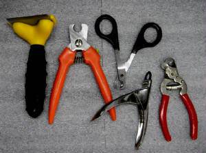 assorted_nail_cutters.jpg